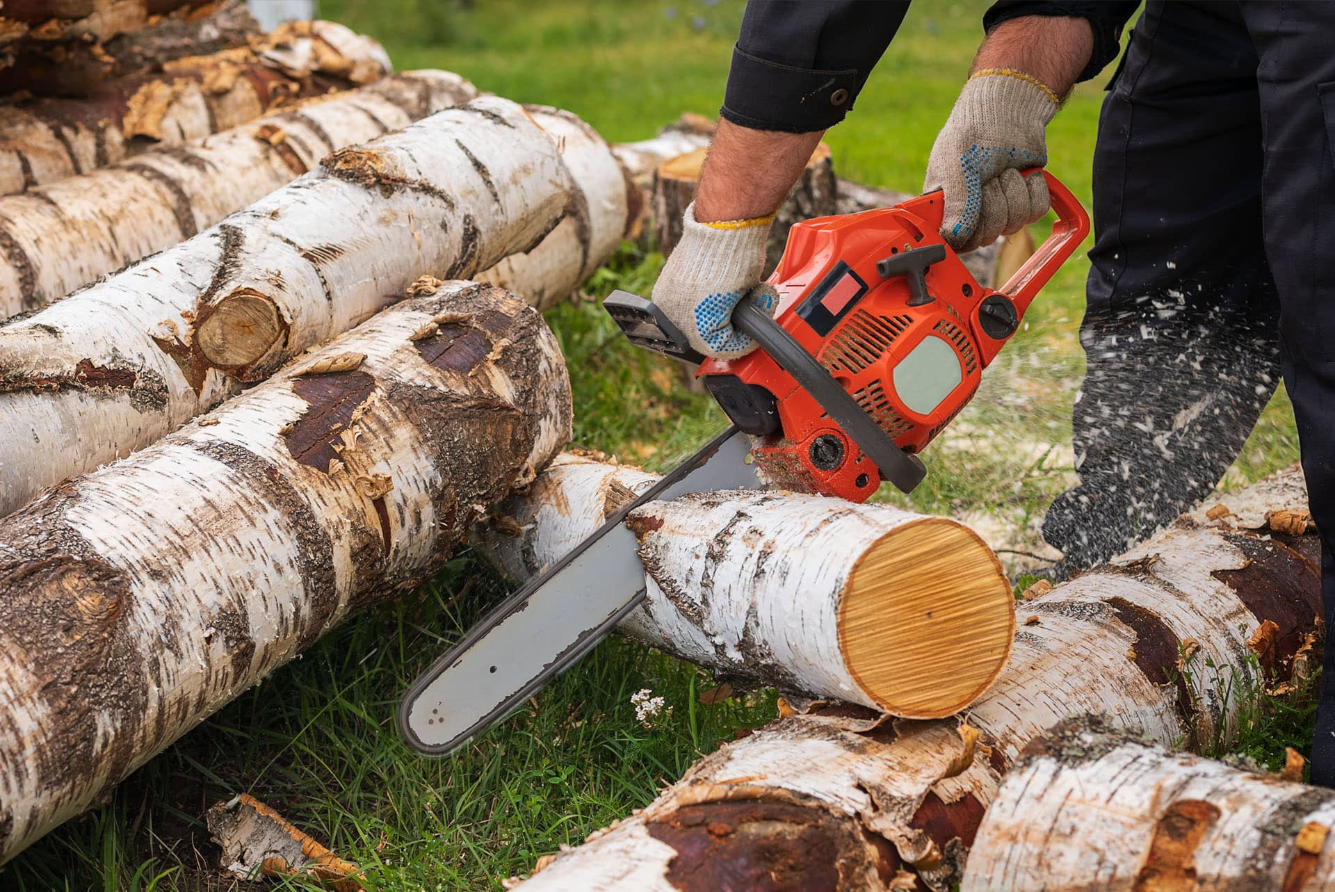 sawn-and-treated-timber-rough-sawn-man-logs